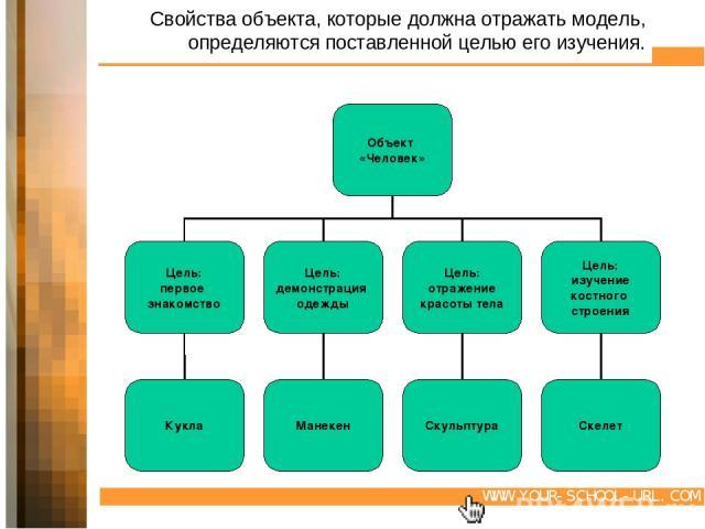 Свойства объекта, которые должна отражать модель, определяются поставленной целью его изучения. WWW.YOUR-SCHOOL-URL.COM