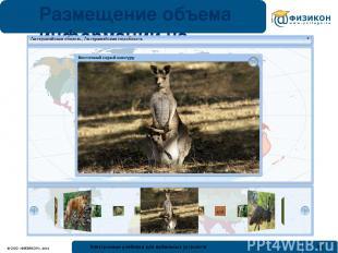 Размещение объема информации на небольшом экране © ООО «ФИЗИКОН», 2012 Электронн
