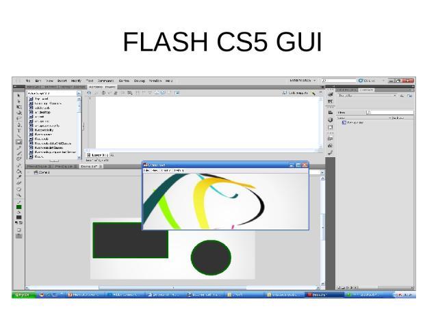 FLASH CS5 GUI