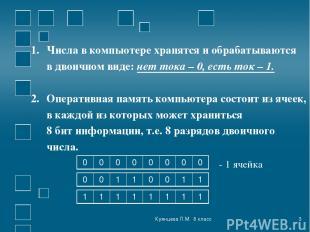 Куянцева Л.М. 8 класс * Числа в компьютере хранятся и обрабатываются в двоичном