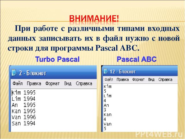 При работе с различными типами входных данных записывать их в файл нужно с новой строки для программы Pascal ABC.