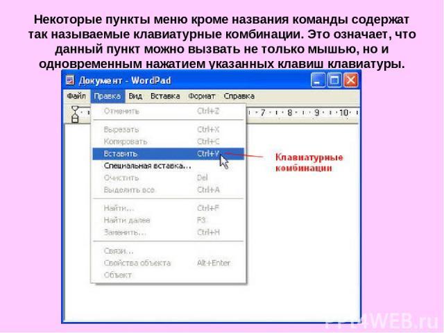 Некоторые пункты меню кроме названия команды содержат так называемые клавиатурные комбинации. Это означает, что данный пункт можно вызвать не только мышью, но и одновременным нажатием указанных клавиш клавиатуры.