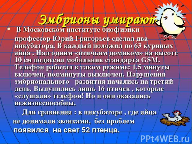 Эмбрионы умирают В Московском институте биофизики профессор Юрий Григорьев сделал два инкубатора. В каждый положил по 63 куриных яйца . Над одним «птичьим домиком» на высоте 10 см подвесил мобильник стандарта GSM. Телефон работал в таком режиме: 1,5…
