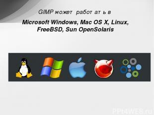 GIMP может работать в Microsoft Windows, Mac OSX, Linux, FreeBSD, Sun OpenSolar