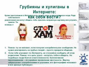 Грубияны и хулиганы в Интернете: как себя вести? Кроме преступников в Интернете