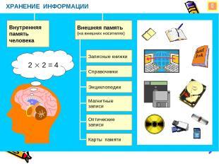 ХРАНЕНИЕ ИНФОРМАЦИИ Внутренняя память человека Внешняя память (на внешних носите