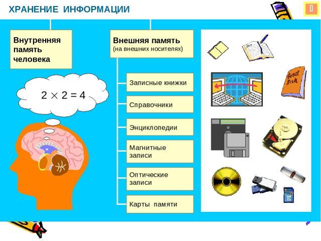 ХРАНЕНИЕ ИНФОРМАЦИИ Внутренняя память человека Внешняя память (на внешних носителях) 2 2 = 4