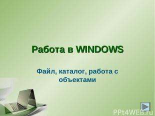 Работа в WINDOWS Файл, каталог, работа с объектами