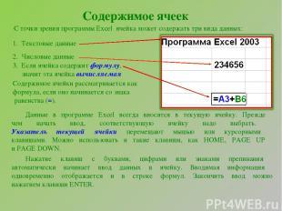 Содержимое ячеек С точки зрения программы Excel ячейка может содержать три вида