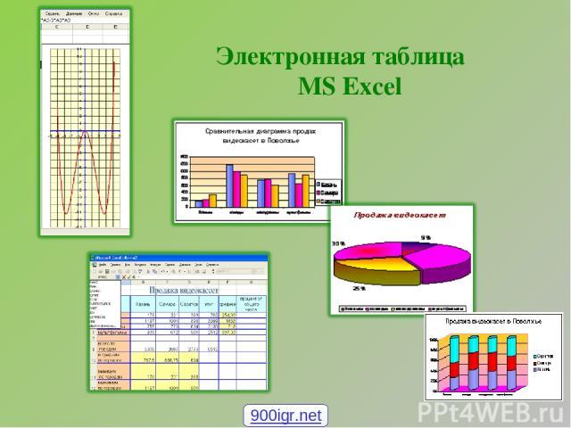 Электронная таблица MS Excel 900igr.net