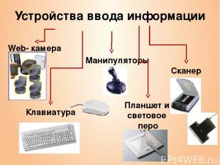 Устройства ввода информации Манипуляторы Сканер Клавиатура Web- камера Планшет и