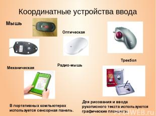 Координатные устройства ввода Мышь Трекбол В портативных компьютерах используетс