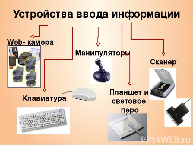 Устройства ввода информации Манипуляторы Сканер Клавиатура Web- камера Планшет и световое перо