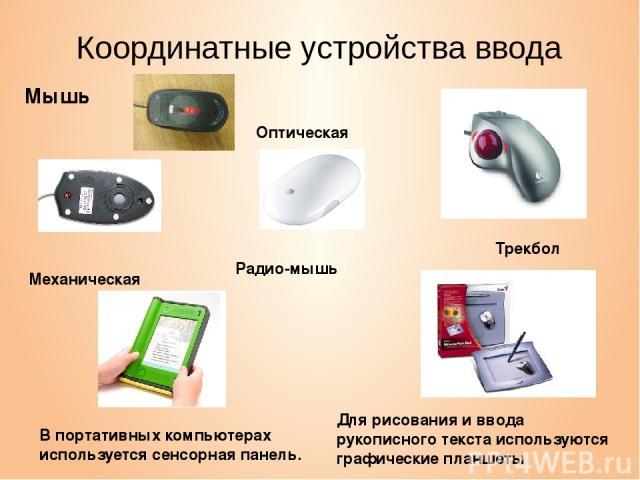 Координатные устройства ввода Мышь Трекбол В портативных компьютерах используется сенсорная панель. Для рисования и ввода рукописного текста используются графические планшеты Оптическая Механическая Радио-мышь