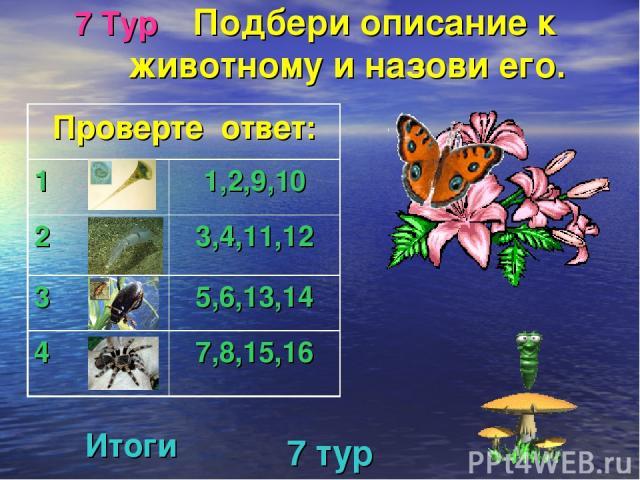 7 Тур Подбери описание к животному и назови его. 7 тур Итоги