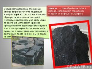 Среди протерозойских отложений иногда встречается угле подобный минерал шунгит.