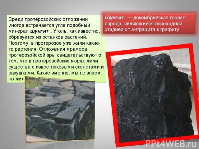 Среди протерозойских отложений иногда встречается угле подобный минерал шунгит. Уголь, как известно, образуется из останков растений. Поэтому, в протерозое уже жили какие-то растения. Отложения мрамора протерозойской эры свидетельствуют о том, что в…