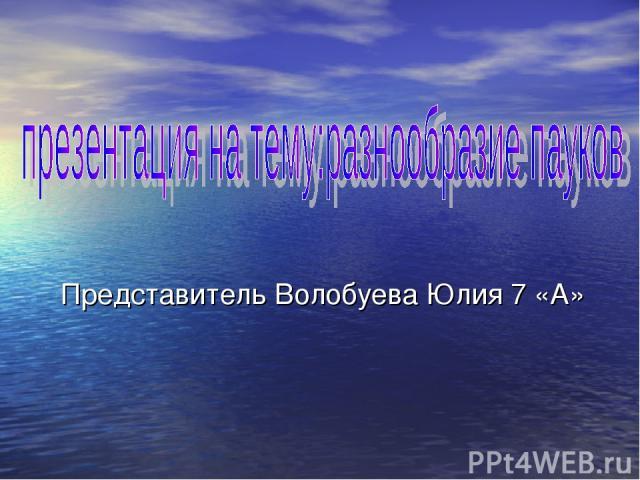 Представитель Волобуева Юлия 7 «А»