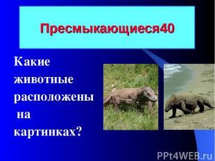 Пресмыкающиеся 40 Какие животные расположены на картинках?