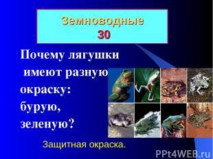 Земноводные 30 Почему лягушки имеют разную окраску: бурую, зеленую? Защитная окр