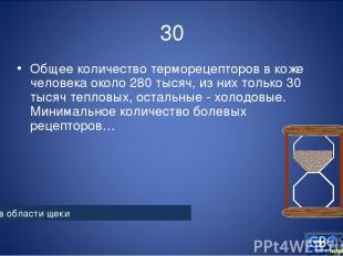 30 Общее количество терморецепторов в коже человека около 280 тысяч, из них толь
