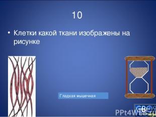 10 Клетки какой ткани изображены на рисунке Гладкая мышечная