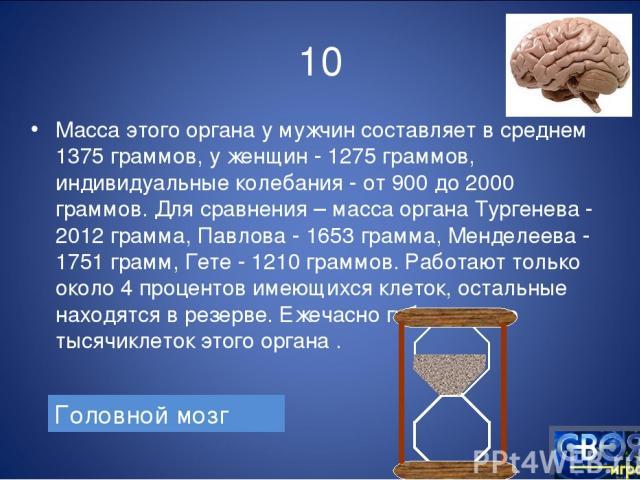 10 Масса этого органа у мужчин составляет в среднем 1375 граммов, у женщин - 1275 граммов, индивидуальные колебания - от 900 до 2000 граммов. Для сравнения – масса органа Тургенева - 2012 грамма, Павлова - 1653 грамма, Менделеева - 1751 грамм, Гете …
