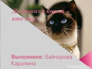 Домашняя кошка – кто она? Выполнила: Байчорова Каралина ученица 3 «А» класса  Р
