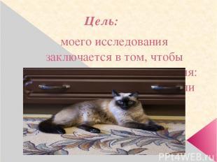 Цель: моего исследования заключается в том, чтобы выяснить, кто кошка для меня: