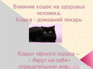 Влияние кошек на здоровье человека. Кошка - домашний лекарь Кошки чёрного окраса