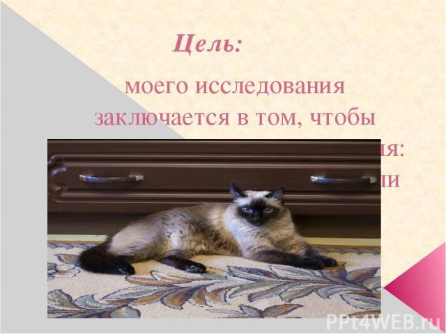 Цель: моего исследования заключается в том, чтобы выяснить, кто кошка для меня: питомец, лекарь, игрушка или друг.