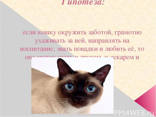 Гипотеза: если кошку окружить заботой, грамотно ухаживать за ней, направлять на воспитание, знать повадки и любить её, то она может стать и другом, и лекарем и объектом восхищения.