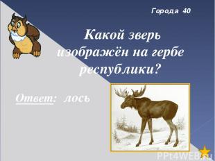 Интернет-сайты http://vsesoki.narod.ru/kapusta.html http://www.collection-globes