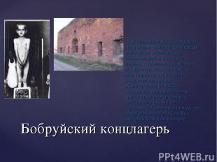 Бобруйский концлагерь В сентябре 1941 года Али Асхадович ушёл на фронт. В тяжёло