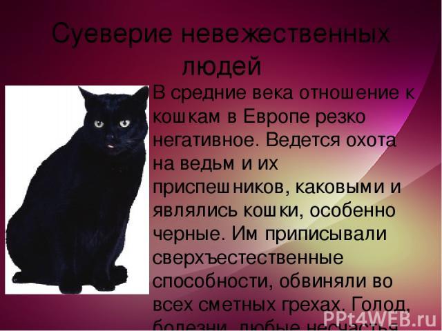 Суеверие невежественных людей В средние века отношение к кошкам в Европе резко негативное. Ведется охота на ведьм и их приспешников, каковыми и являлись кошки, особенно черные. Им приписывали сверхъестественные способности, обвиняли во всех сметных …