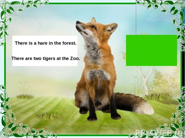 There is a hare in the forest. There are two tigers at the Zoo.