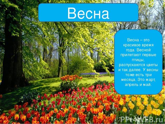 Весна Весна – это красивое время года. Весной прилетают первые птицы, распускаются цветы и так далее. У весны тоже есть три месяца. Это март, апрель и май.
