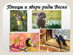 Птицы и звери рады Весне