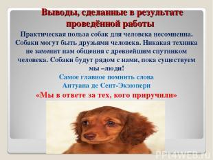 Выводы, сделанные в результате проведённой работы Практическая польза собак для