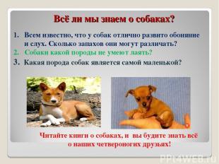Всё ли мы знаем о собаках? Всем известно, что у собак отлично развито обоняние и