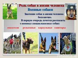 Роль собак в жизни человека Военные собаки Значение собак в жизни человека беско