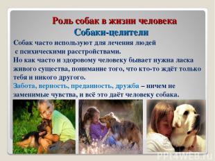 Роль собак в жизни человека Собаки-целители Собак часто используют для лечения л