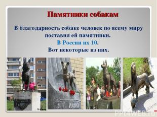 Памятники собакам В благодарность собаке человек по всему миру поставил ей памят