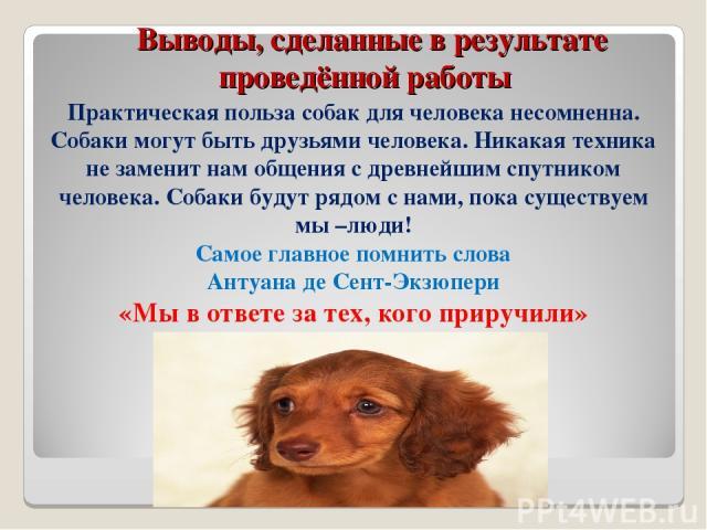 Выводы, сделанные в результате проведённой работы Практическая польза собак для человека несомненна. Собаки могут быть друзьями человека. Никакая техника не заменит нам общения с древнейшим спутником человека. Собаки будут рядом с нами, пока существ…