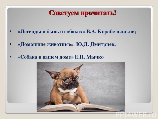 Советуем прочитать! «Легенды и быль о собаках» В.А. Корабельников; «Домашние животные» Ю.Д. Дмитриев; «Собака в вашем доме» Е.Н. Мычко