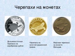 Черепахи на монетах Дальневосточная черепаха на серебряном рубле Черепаха на зол