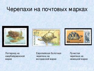Черепахи на почтовых марках Логгерхед на азербайджанской марке Европейская болот