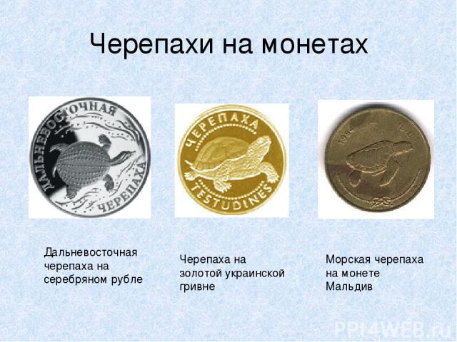 Черепахи на монетах Дальневосточная черепаха на серебряном рубле Черепаха на золотой украинской гривне Морская черепаха на монете Мальдив