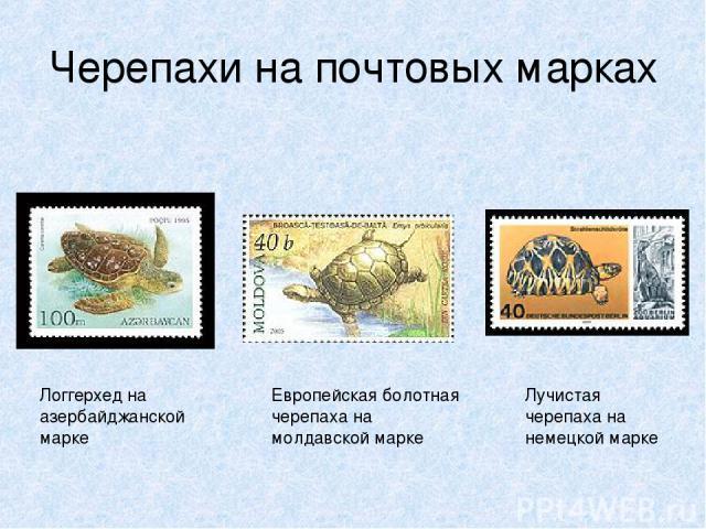 Черепахи на почтовых марках Логгерхед на азербайджанской марке Европейская болотная черепаха на молдавской марке Лучистая черепаха на немецкой марке