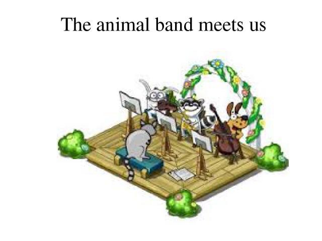 The animal band meets us